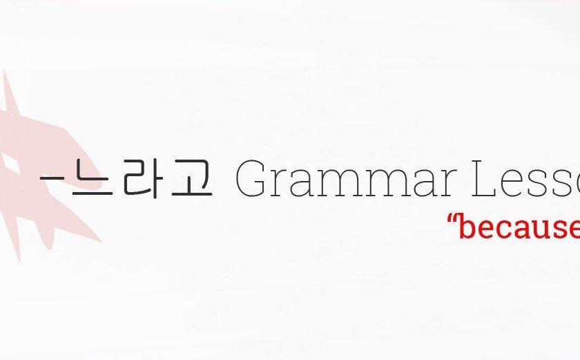 느라고 grammar lesson