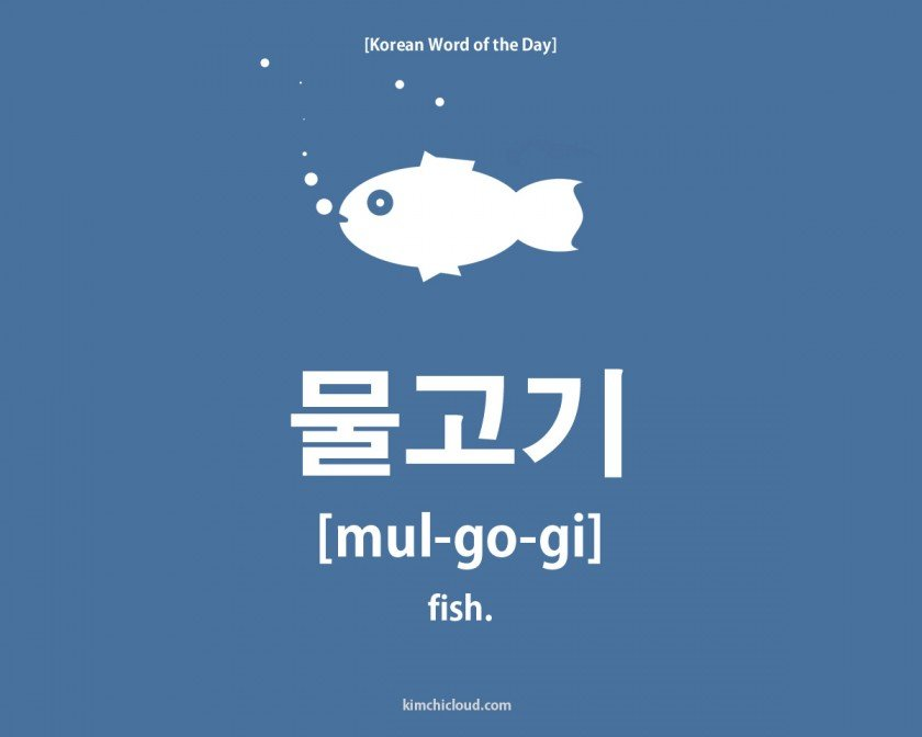 Korean Word of the Day: How to say Fish in Korean