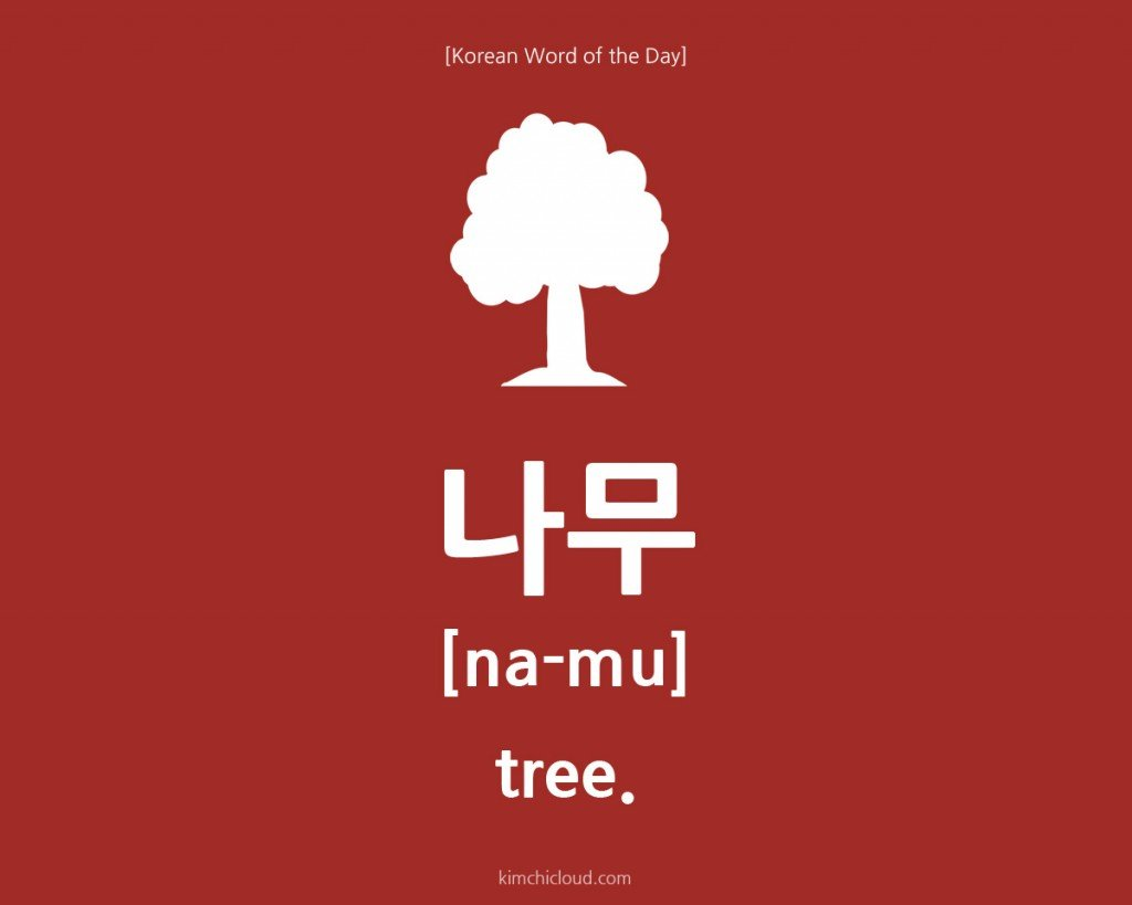 Korean Word of the Day: How to say Tree in Korean