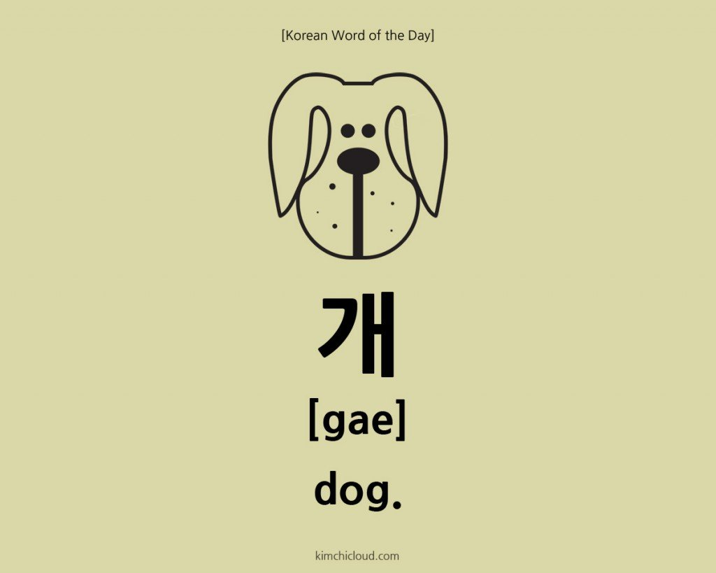 How To Say Dog In Korean